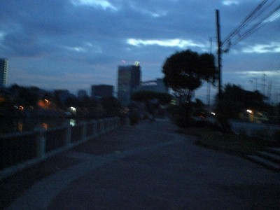 A park alongside Pasig River (sorry for the blurry shot)