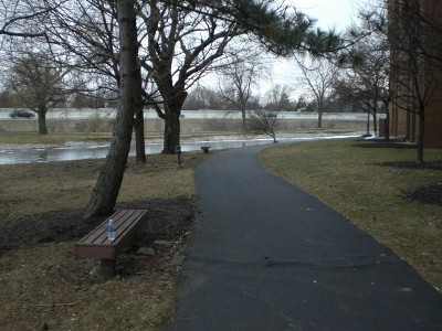 My running trail: notice the frozen pond behind.