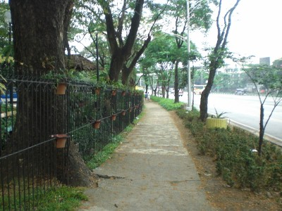 The jogging trail outside QMC's fence